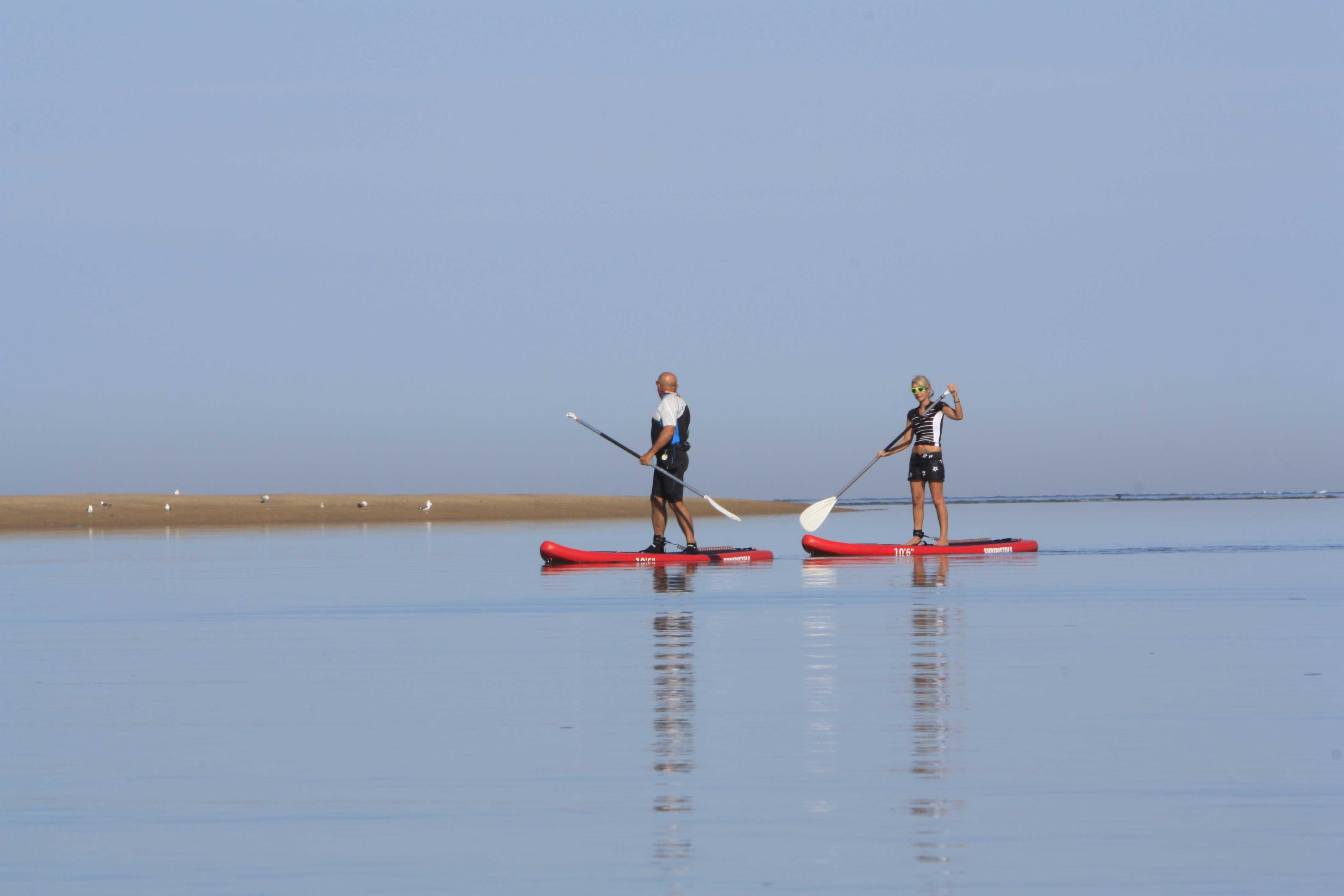 Photo du Offre de Stage de Stand Up Paddle 1er mai 2021 - Location stand up paddle proposé par BASE NAUTIQUE LA PALMYRE affilié à la Fédération Française de Voile